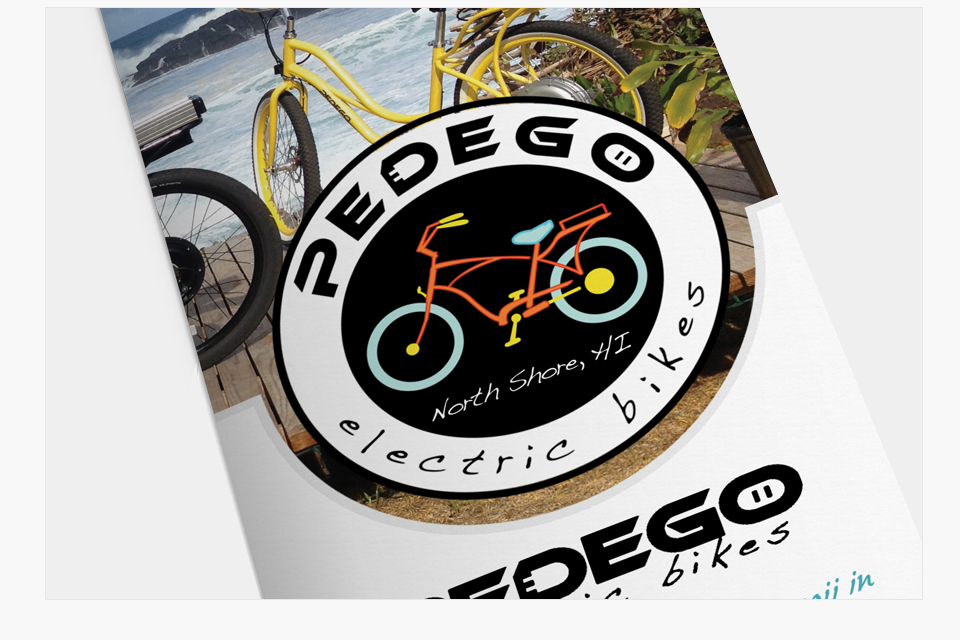pedego-details