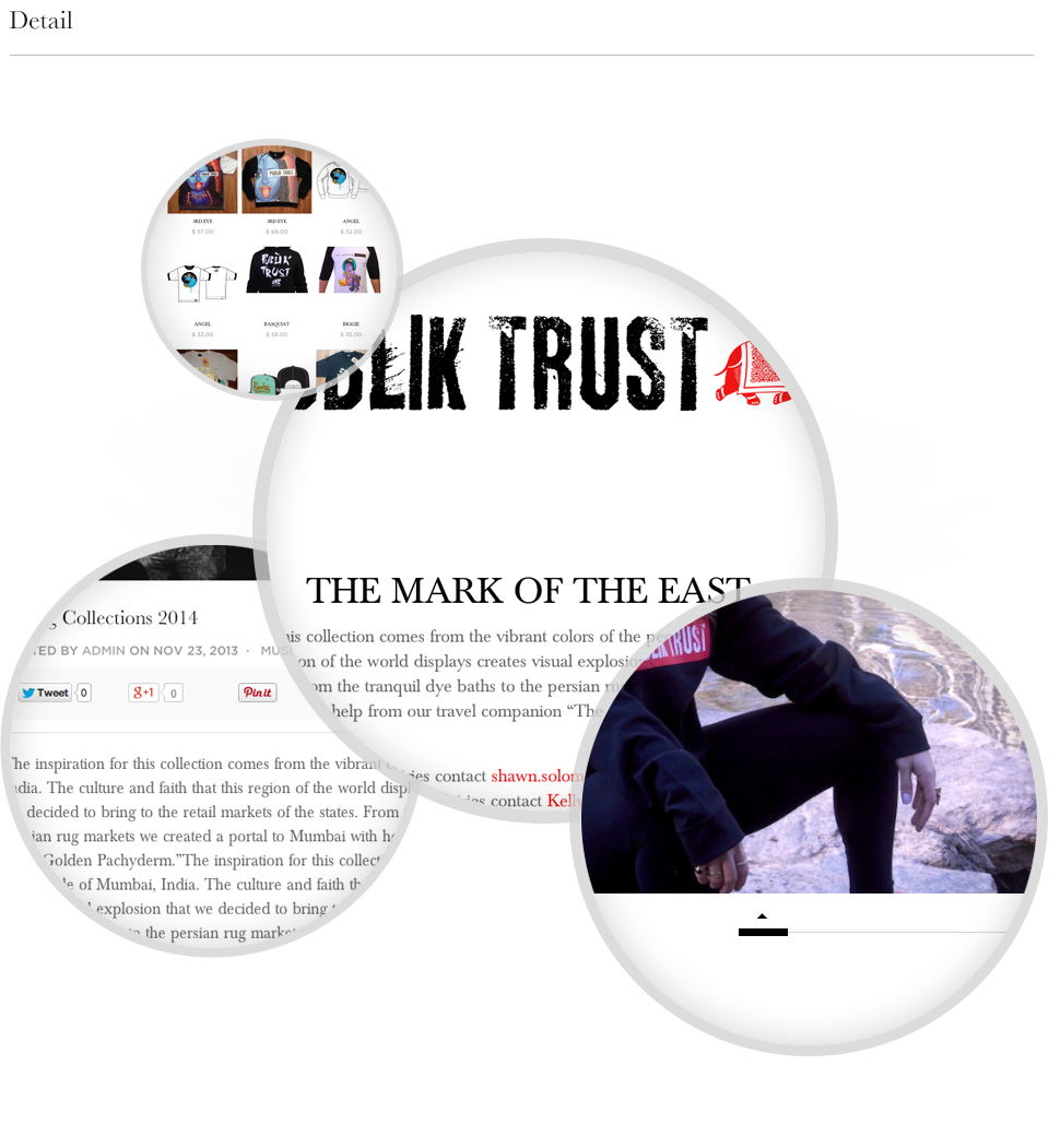 publik-trust-website-details